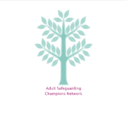 Adult Safeguarding Champions Network*
