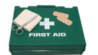 Emergency First Aid at Work, Level 2 (accredited workshop).